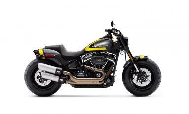 Harley-Davidson Luncurkan Edisi Terbatas Custom Paint