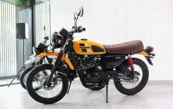 Baru Dua Pekan Rilis, Penjualan Kawasaki W175TR Sudah Capai Target